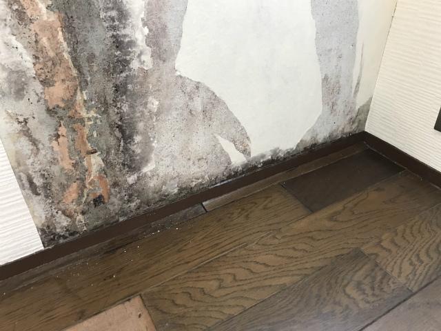 外壁雨漏り床剝がれ