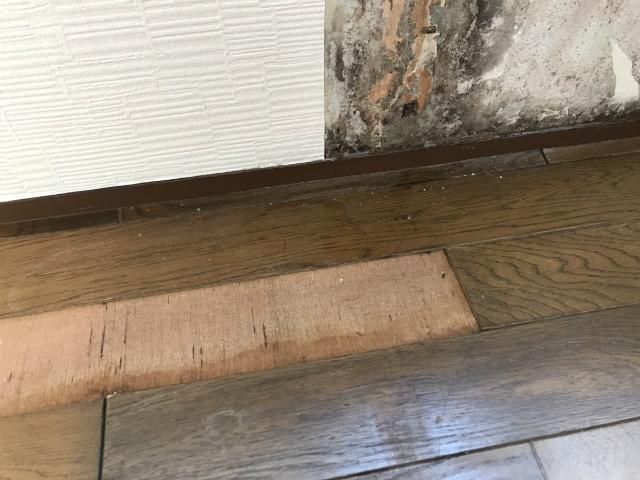 外壁雨漏り床も