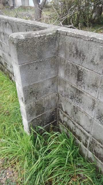 ブロック塀 高圧洗浄 前