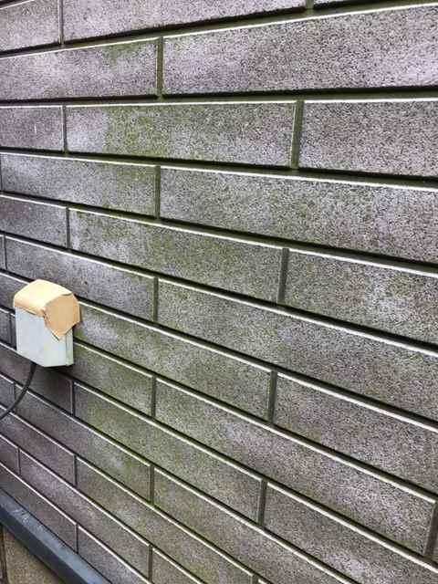 今治市 外壁塗装 コケ