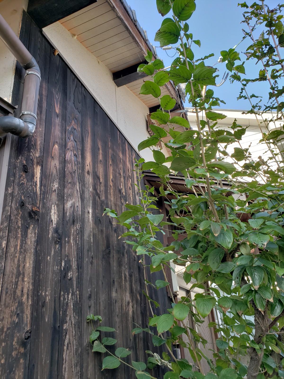 焼杉板外壁